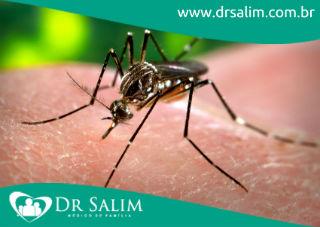 Cuidado com a dengue!