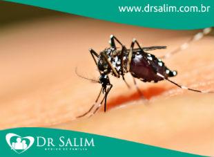 Casos de dengue aumentam em São Paulo