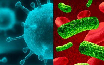Infecção viral e infecção bacteriana