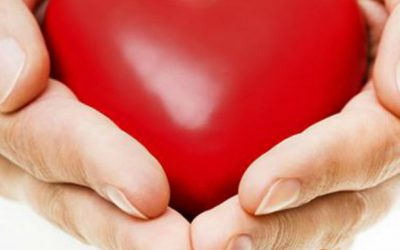 Transplante renal: como o doador é selecionado?