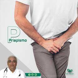 Priapismo: o que é, causas e tratamento