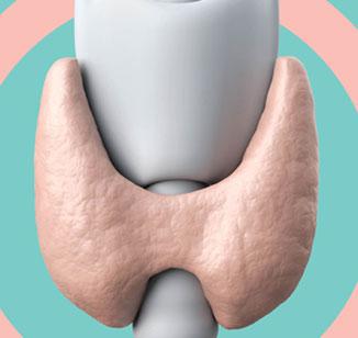 O que é a tireoide?