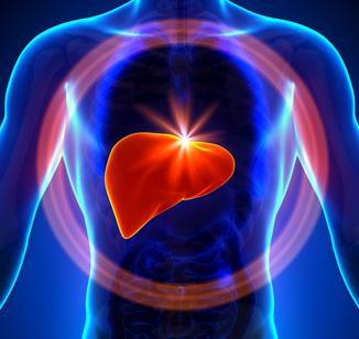 Esteatose hepática: causas e tratamento