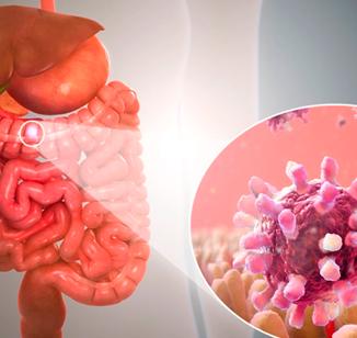 Infecção intestinal: atenção maior no verão!
